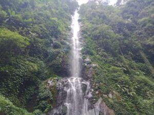 Menyusuri Indahnya Hutan Rimba di Coban Jodo, Malang