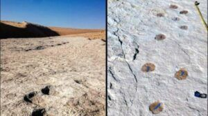Jejak Manusia Purba Berusia 120.000 Tahun Ditemukan di Arab Saudi