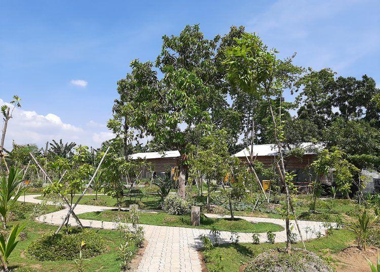 Tahura Lempung, Hutan Baru Seluas 1,9 Hektare Milik Kota Surabaya
