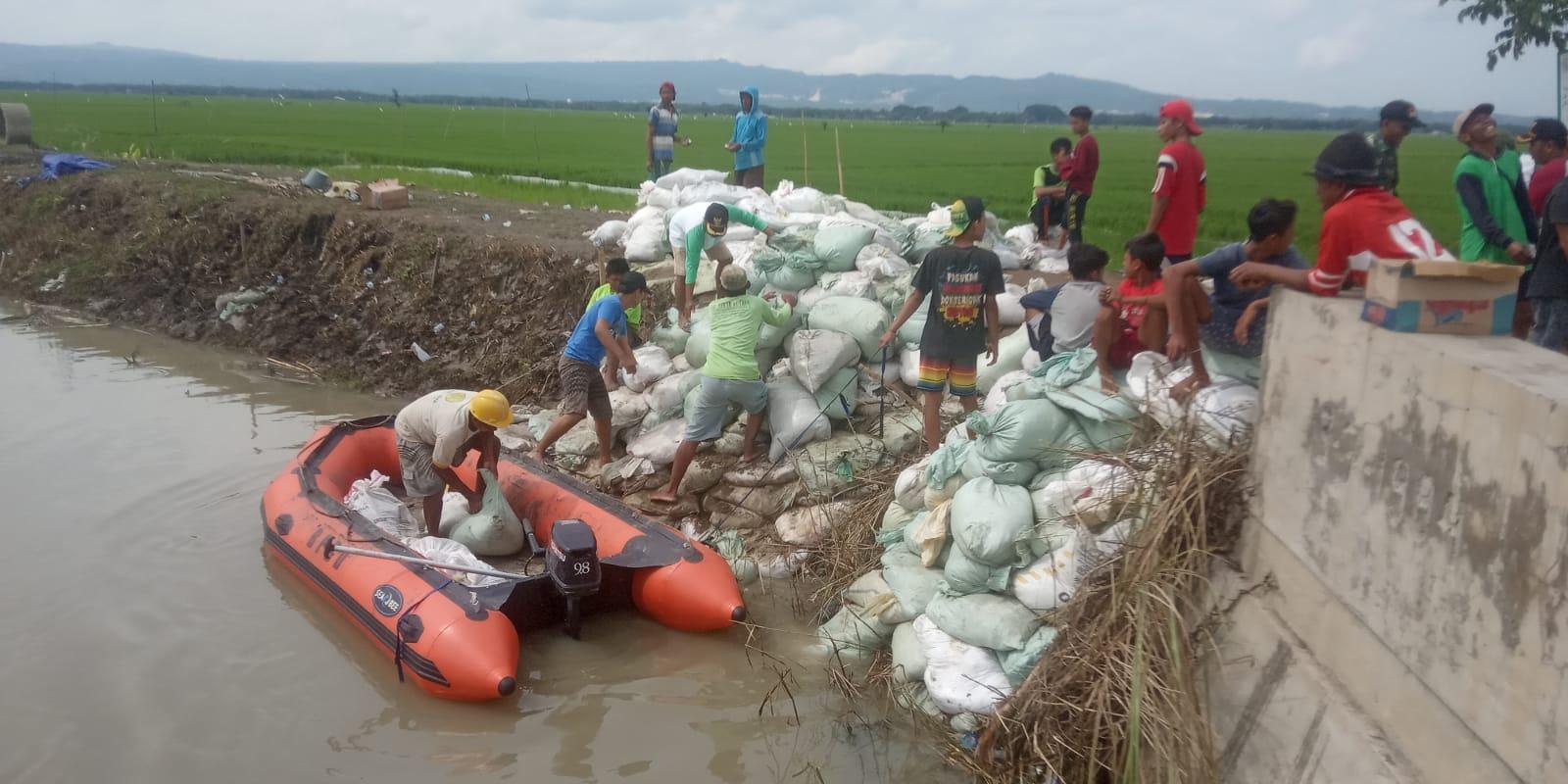Perbaikan tanggul Sungai Ingas, Bojonegoro yang sempat jebol Senin (14/12) lalu dan mengakibatkan banjir. (Foto: Agus Setiawan/Tugu Jatim)