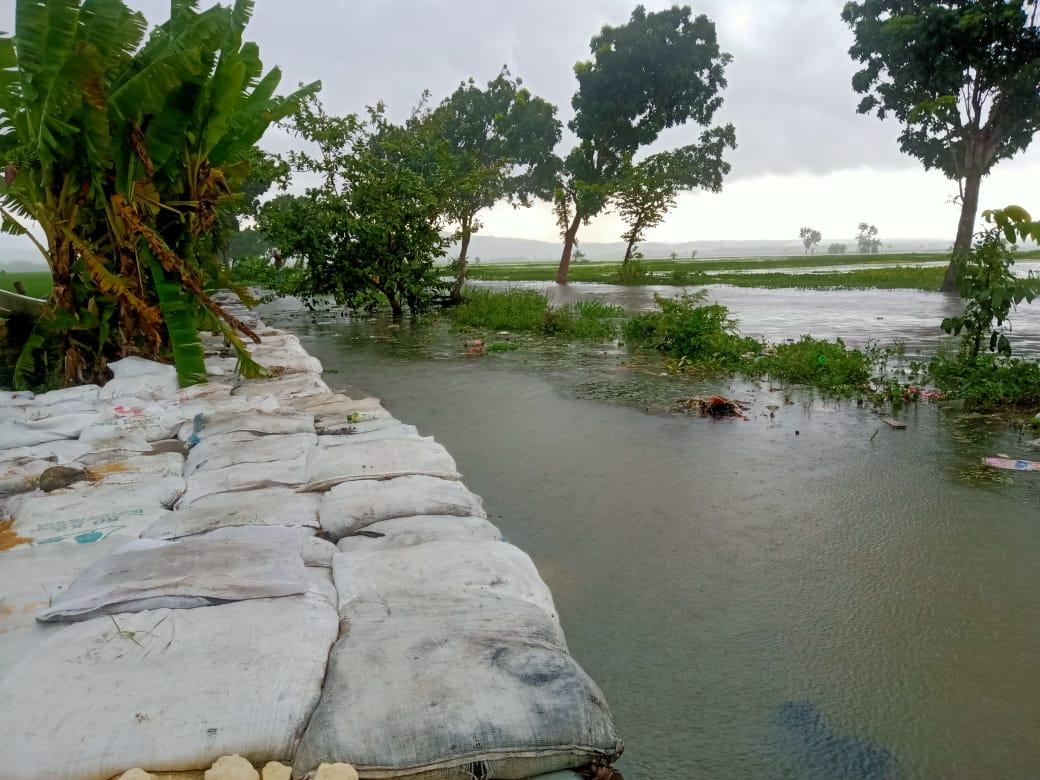 Warga membuat tanggul di Desa Plandirejo, Tuban, karena air meluap dan menimbulkan banjir. (Foto:Mila Arinda/Tugu Jatim)