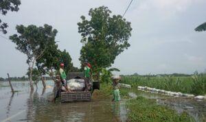 Warga Desa Plandirejo, Tuban, gotong royong membuat tanggul. (Foto: Mila Arinda/Tugu Jatim)