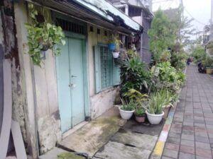 Pemandangan di Kampung Lawas Maspatih. Sesuai namanya, rumah-rumah kuno tampak berjajar hampir di segala penjuru. (Foto: Rangga Aji/Tugu Jatim)