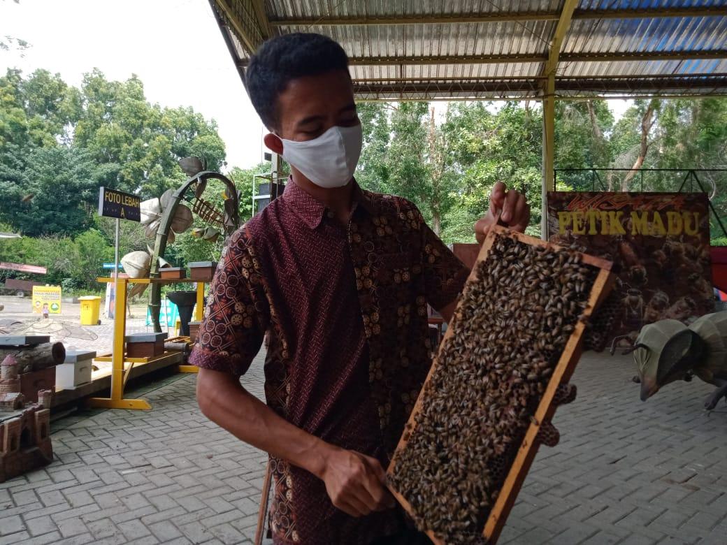 Agro Tawon Wisata Petik Madu Malang. (Foto: Rap/Tugu Malang/Tugu Jatim)