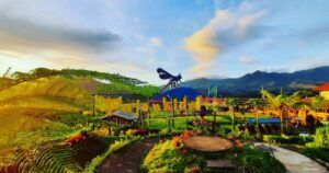 Pengunjung bisa menikmati suasana sambil wisata kuliner di tengah sawah. (Foto: IG Cafesawah_pujonkidul/Tugu Jatim)