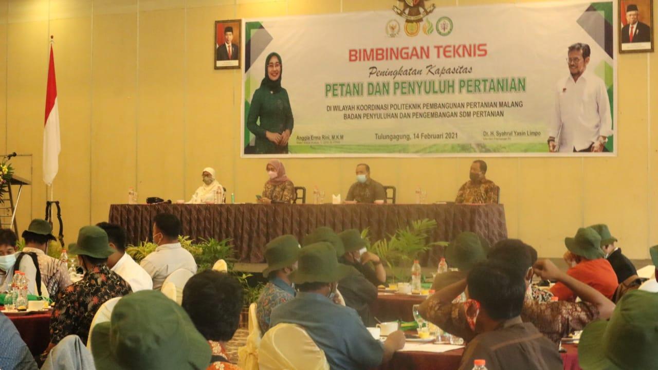 Gelaran acara bimbingan teknis yang dilakukan oleh Komisi IV DPR RI pada kelompok tani di Tulunaagung. (Foto: Dokumen) tugu jatim