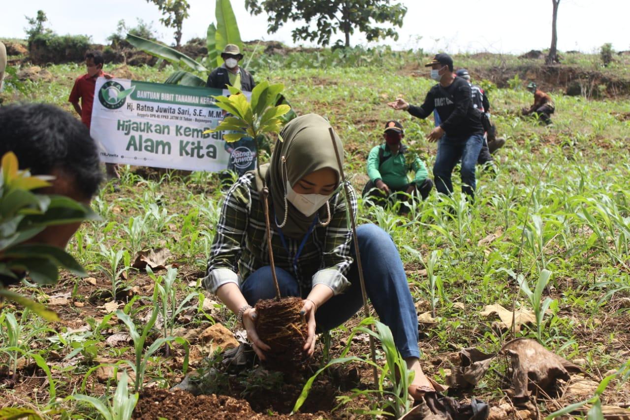 Anggota Komisi VII Dewan Perwakilan Rakyat Republik Indonesia (DPR RI) Ratna Juwita Sari saat menanam pohon di Desa Ngino, Kecamatan Semanding, Tuban, Sabtu (13/2/2021) lalu. (Foto: Dokumen/DPR RI Komisi VII) tugu jatim