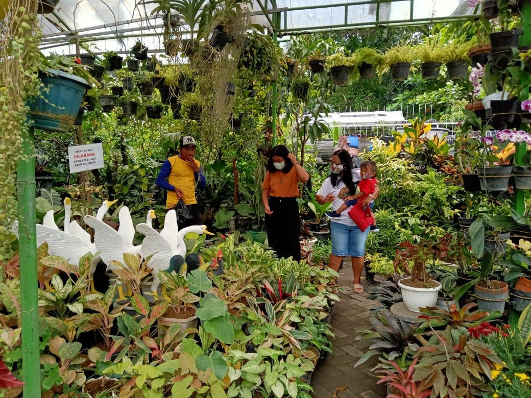 Pembeli sedang memilih tanaman di toko bunga Bagus Indah Tri Aulia (BITA) di Jl.Veteran Bojonegoro. (Foto: Mila Arinda/Tugu Jatim)