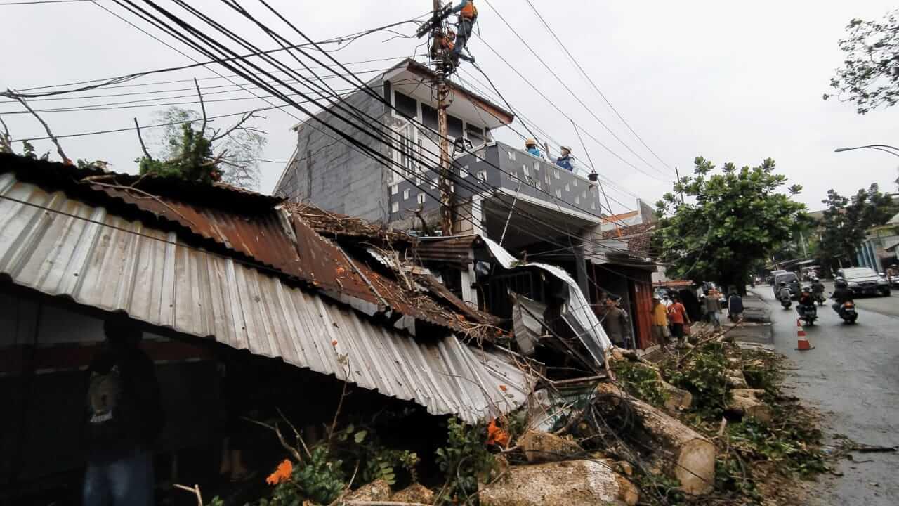 Pohon waru di daerah Mergan, Kota Malang, menimpa atap bengkel warga karena hujan deras dan angin kencang. (Foto: Azmy/Tugu Jatim)