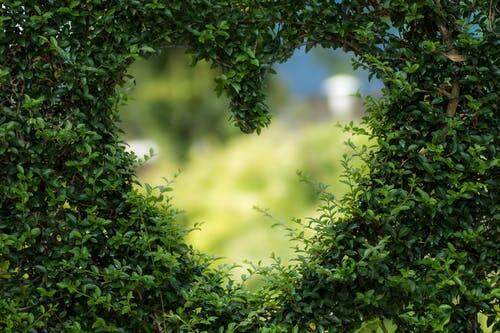 Ilustrasi fenomena alam unik berbentuk hati. (Foto: Pexels/Tugu Jatim)