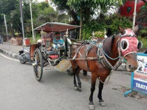 Suprapto setia menunggu penumpang. (Foto: Sholeh/Tugu Jatim)