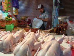 Harga Daging Ayam Potong di Pasar Besar Kota Batu Capai Rp 40 Ribu per Kilogram