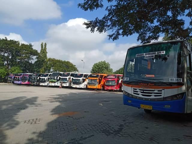 Bus yang terparkir di Terminal Rajekwesi Bojonegoro. (Foto: Mila Arinda/Tugu Jatim)