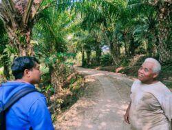 Penampakan Perkebunan Sawit Bekas Persawahan di Malang, Tanah Retak-Retak hingga Tak Ada Air