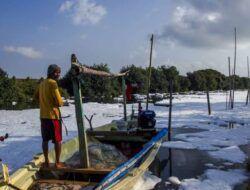 """Gunungan Busa """"Salju"""", Pencemaran Mikroplastik di Tambak Wedi yang Masih Belum Serius Ditangani Pemkot Surabaya"""