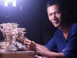 Nanang Subandi, Perajin Bonsai Aquatic asal Trenggalek Beromzet Rp 5 Juta Per Bulan