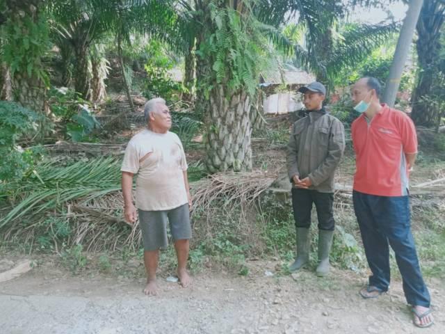 Dosen UB Luchman Hakim saat berbicara langsung dengan petani sawit bernama Sunjoto di Desa Tumpakrejo, Kabupaten Malang.(Foto: Rap/Tugu Jatim)