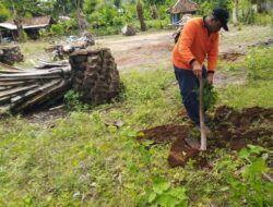 Sahabat Alam Indonesia: Pernah Ada Sawit di Malang Selatan, tapi Rugi!
