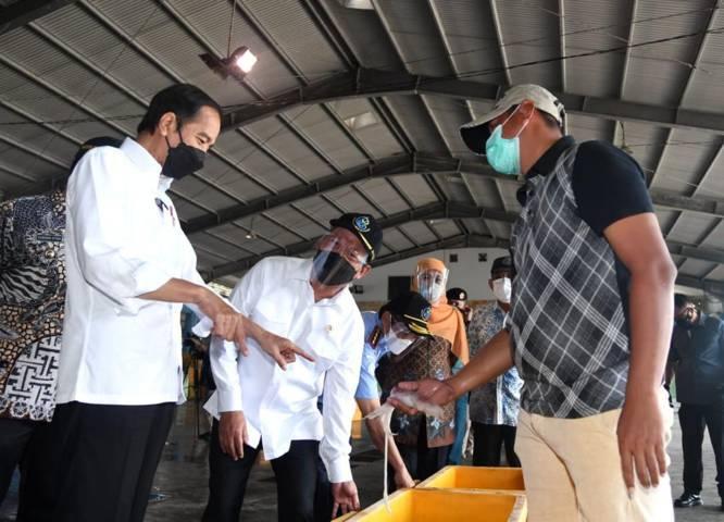 Presiden Joko Widodo (Jokowi) saat meninjau Pusat Pemasaran dan Distribusi Ikan (PPDI) Brondong Kabupaten Lamongan, Jawa Timur, Kamis (6/5/2021) (Foto: Sekretariat Presiden)