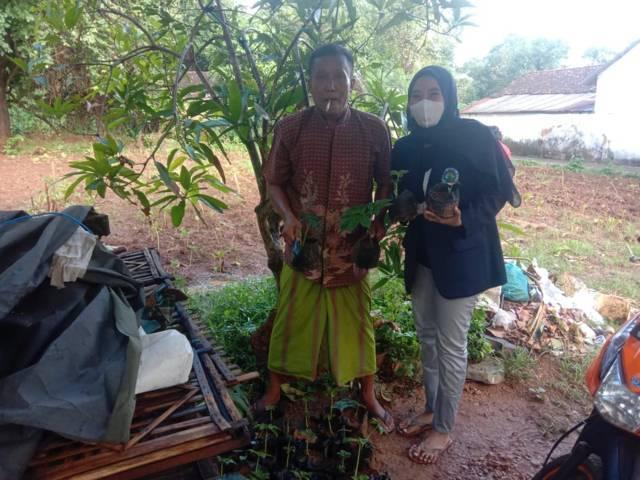 Mahasiswa KKN asal Universitas Negeri Malang (UM) saat melakukan pengembangan tanaman porang di Sumenep April lalu. (Foto: Dokumen) tugu jatim