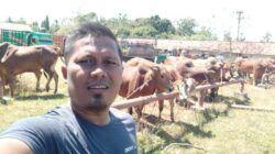 Zainal Alim, pengurus DPC Gerindra Surabaya yang juga pebisnis sapi madura. Bisnis yang ia tekuni sejak tahun 2014 silam. (Foto: Dokumen)