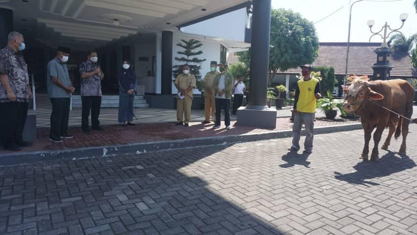 Proses penyerahan hewan kurban dari PT Semen Indonesia (Persero) Tbk. (Foto: Biro Humas dan CSR PT Semen Indonesia Pabrik Tuban/Tugu Jatim)