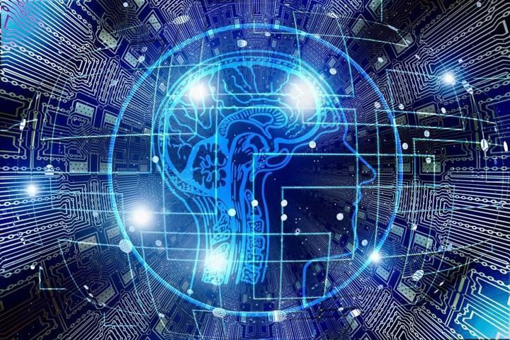 Ilustrasi otak manusia. (Foto: Pixabay/Tugu Jatim)