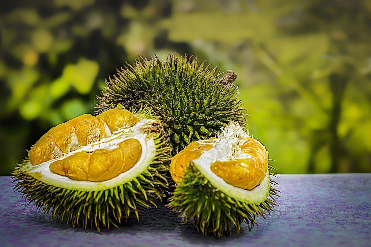 Buah durian bisa dibuat chips crispy/tugu jatim