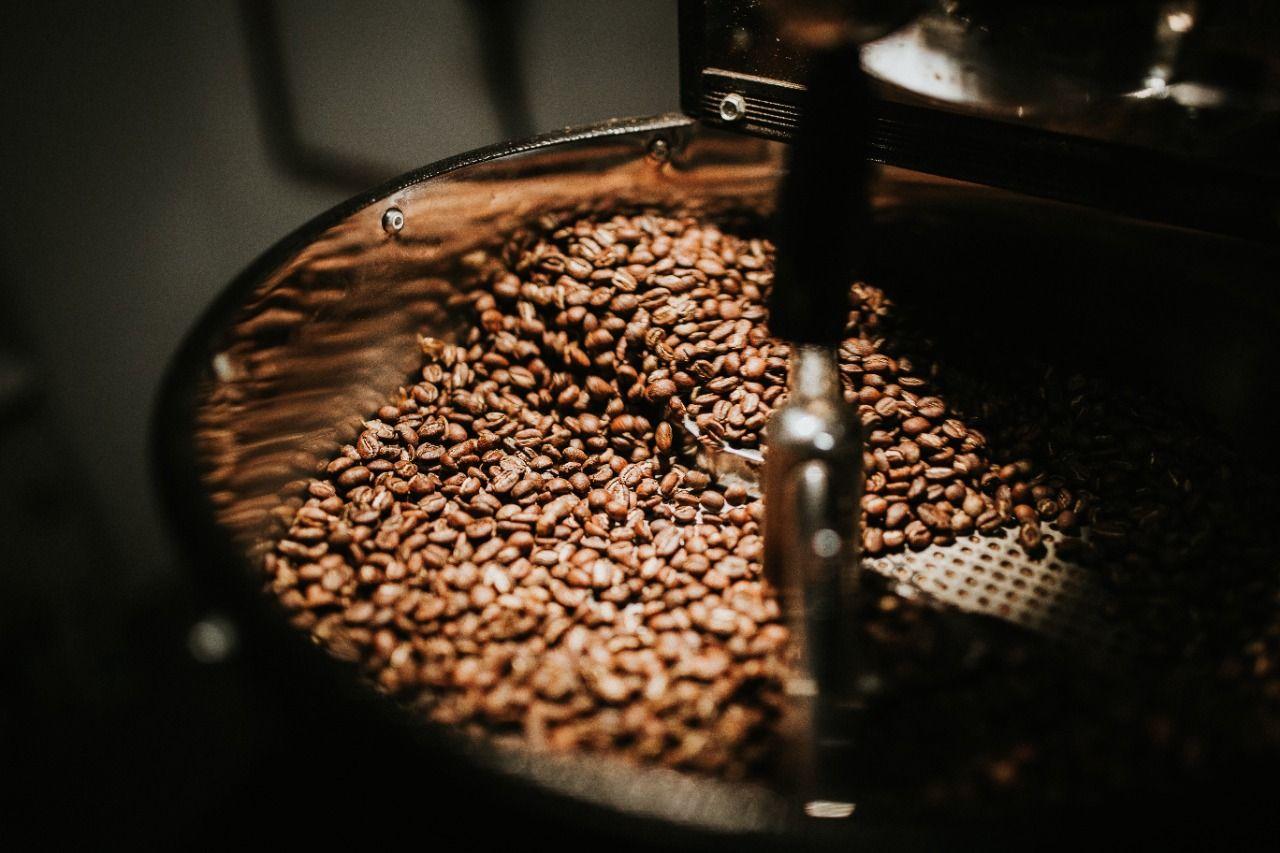 Biji kopi pilihan/ tugu jatim