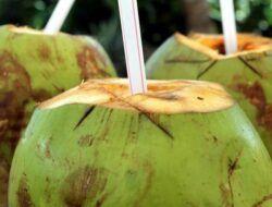 5 Makanan dan Minuman untuk Mengatasi Dehidrasi, Apa Saja?