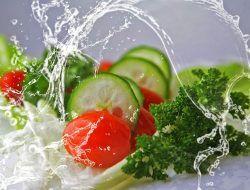 Makanan dan Minuman Yang Baik Dikonsumsi Sebelum Disuntik Vaksin