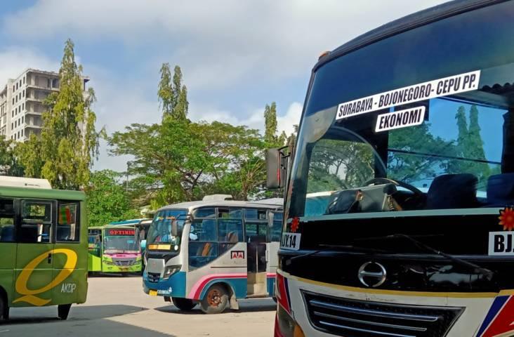 Bus yang terparkir di Terminal Rajekwesi Bojonegoro. (Foto: Mila Arinda/Tugu Jatim) aturan ppkm darurat