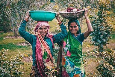 Pasio Vasool di India/tugu jatim