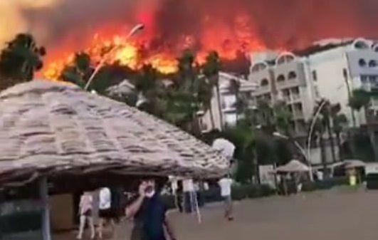 Kebakaran hutan di Turki tewaskan delapan orang/ tugu jatim