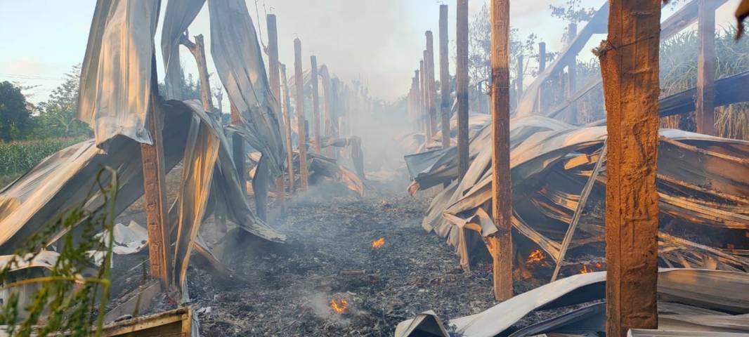 Puing-puing kandang ayam di Ngadiluwih, Kediri yang hangus akibat kebakaran yang disebabkan karena korsleting listrik. Sebanyak 5.500 ekor ayam hangus terpanggang akibat kejadian ini. (Foto: Rino Hayyu/Tugu Jatim)