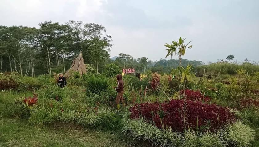 Suasana bumi perkemahan di Glagah Wangi, Kota Batu. (Foto-Foto: Dokumen/Komunitas Jaguar)