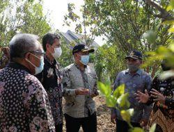 Target Jadi Destinasi Favorit, Kang Riyadi Optimistis Wisata di Tuban Cepat Bangkit