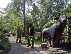Wisata Sumber Banteng Kota Kediri Kembali Buka, Pengunjung Wajib Gunakan Aplikasi Peduli Lindungi