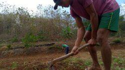 Usai Pecahkan Rekor dan Raih Emas di PON XX Papua, Atlet Asal Tuban Kembali Berladang