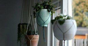 Pot gantung. (Foto: via rumah.com)