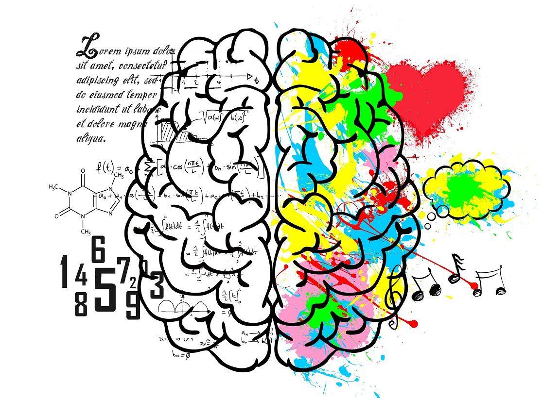 Otak kanan dan otak kiri. (Foto: Pixabay)